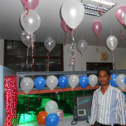 Cubicle Contest-2014