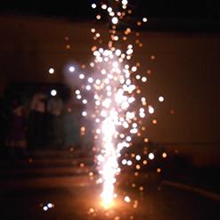 Diwali Celebrations-2014