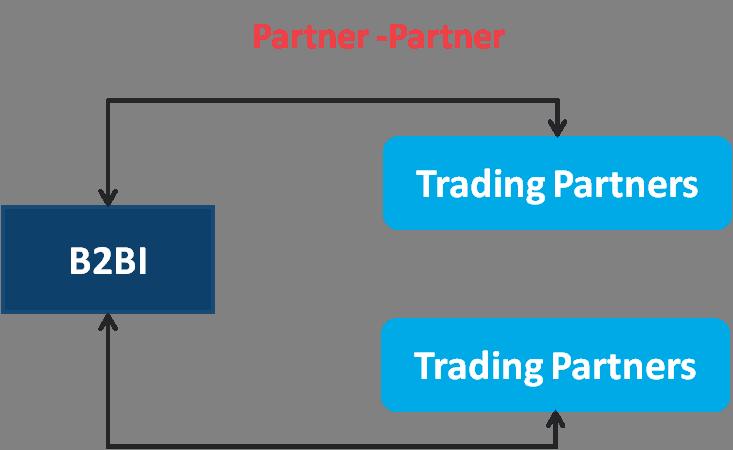 B2BI Partner-Partner